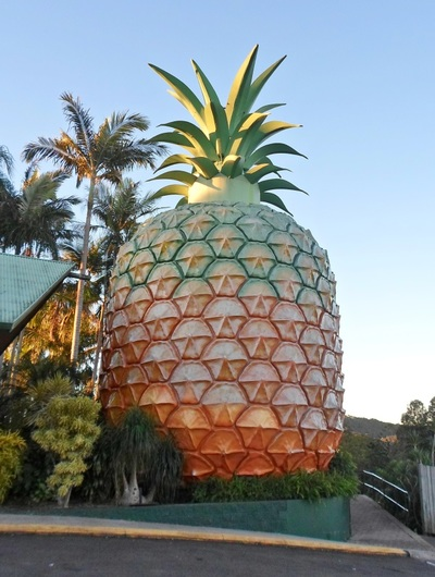 big pineapple nambour queensland