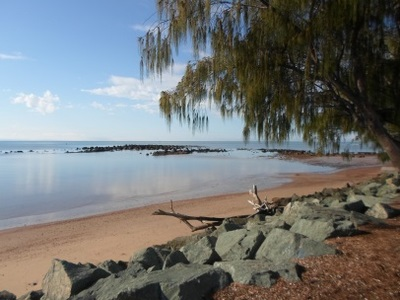 settlement cove redcliffe beach